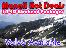 Honeymoon in Manali Package